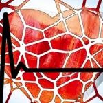 Een hartpatiënte vertelt (18) – Slotwoord