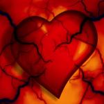 Een hartpatiënte vertelt (15) – Revalidatie